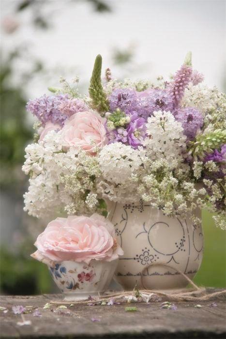 Spring has sprung flowers amp gardens pinterest