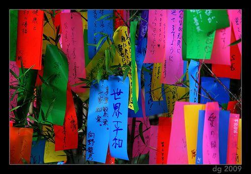 tanabata bamboo