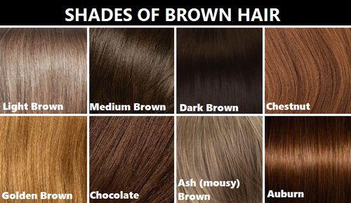 Shades Of Brown Hair Colors Chart  Dark Brown Hairs