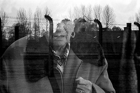 essay about holocaust survivors