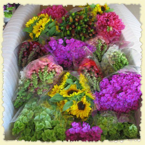 Bunches Of Scrumptious Organic Flowers From California Organic Flowers