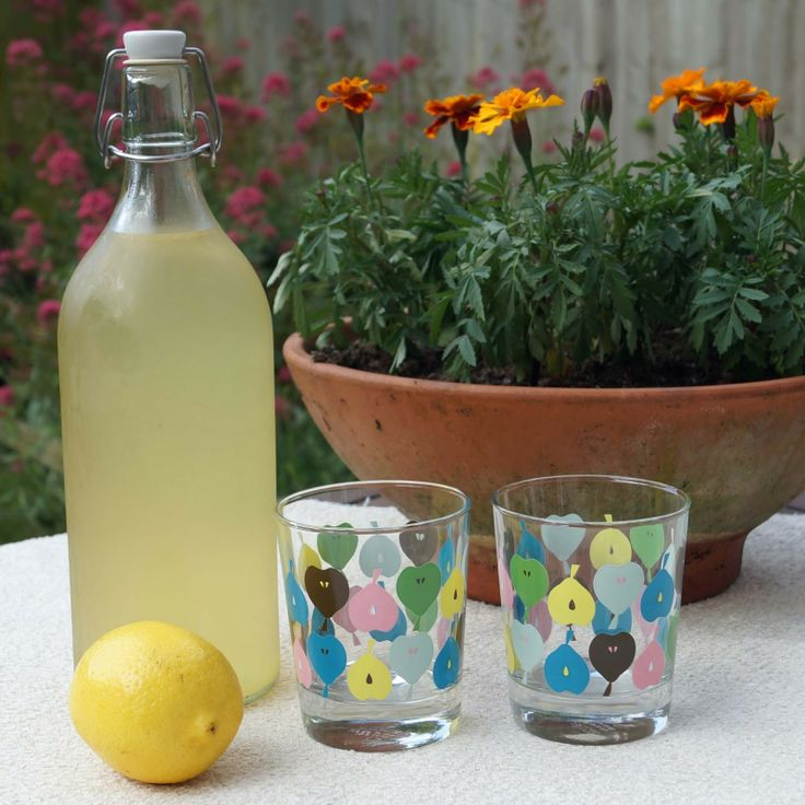 ... and paint...: ... and Homemade Elderflower Cordial @buttonsandpaint
