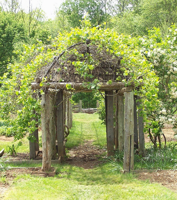 Rustic Arbor arobrs and arches Pinterest