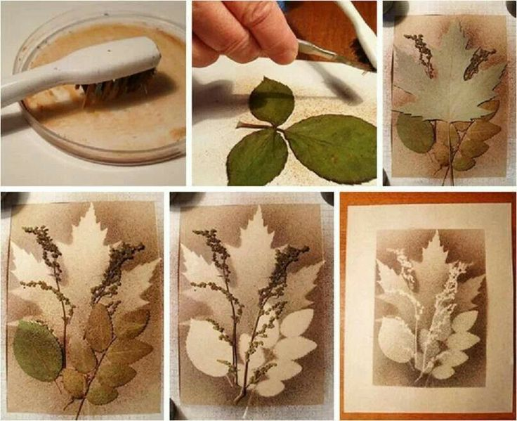 Splatter art with layered leaves tree art projects for for Painting projects for adults