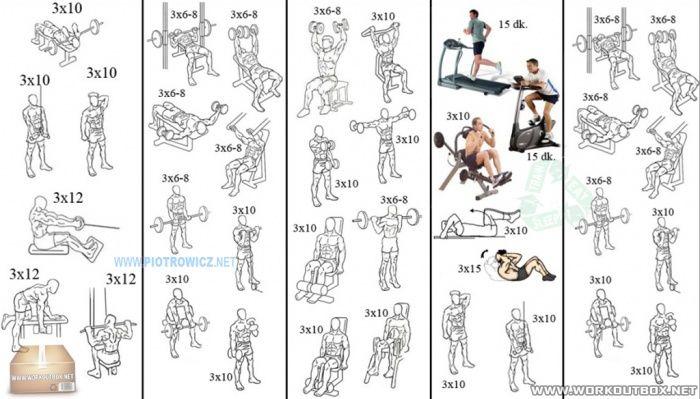 Упражнения по бодибилдингу в домашних условиях