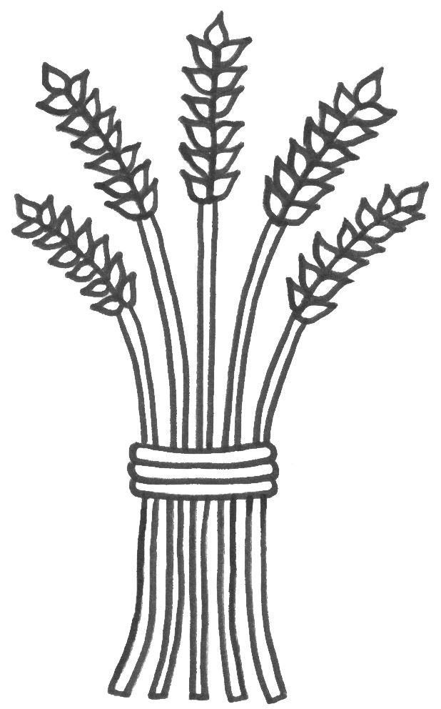 wheat coloring pages - photo#1