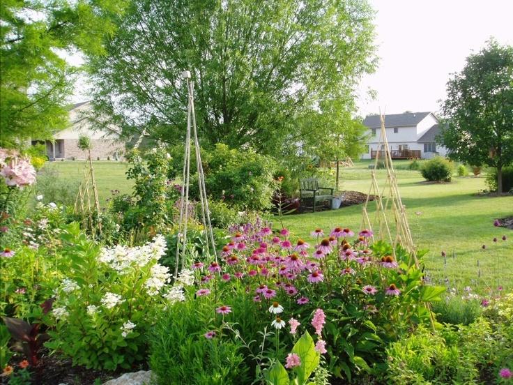 Back Yard Rose Garden