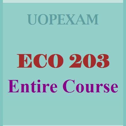 eco 203