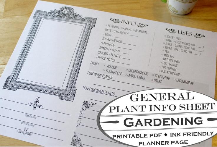 Pin by Jennifer Olson on Garden Ideas Pinterest