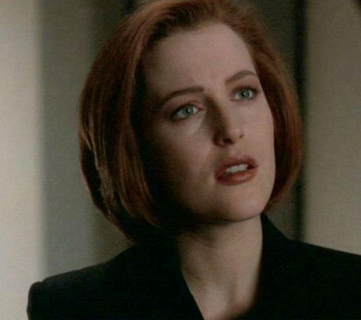 Gillian Anderson   Scu...