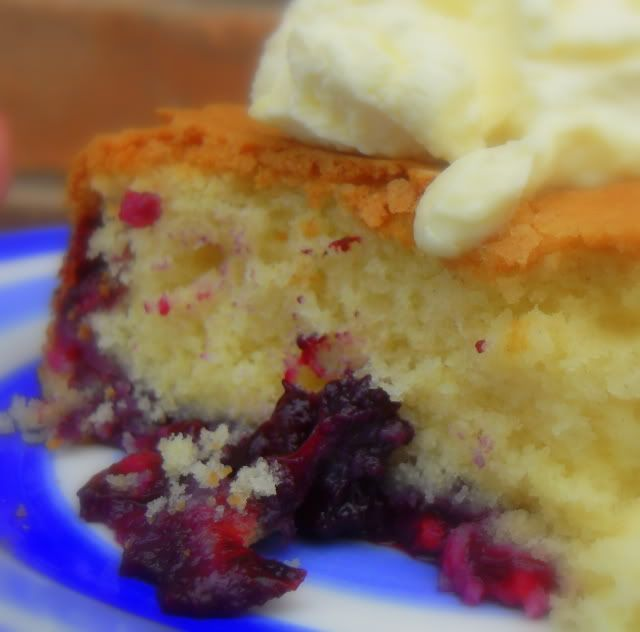 ... English Kitchen: Melt-In-Your-Mouth Blueberry Cake with a Lemon Cream