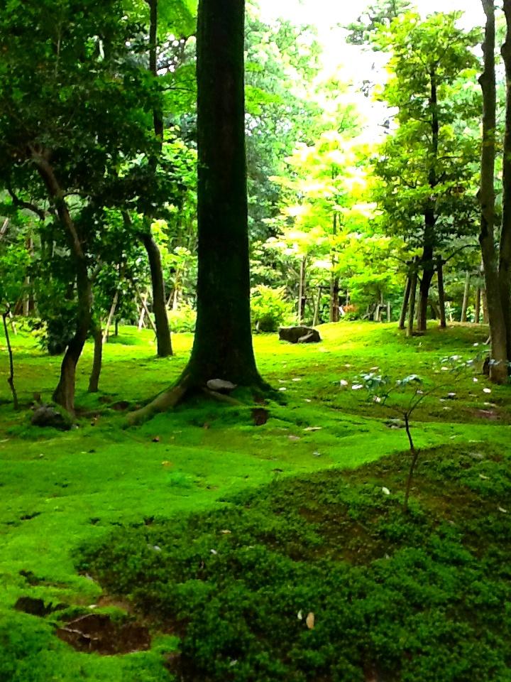 Kenrokuen garden kanazawa japan gardens japanese for Jardin kenrokuen