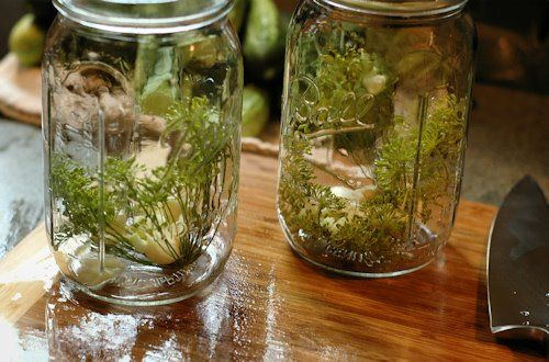 Refrigerator Garlic Dill Pickles | Making Me Hungry | Pinterest