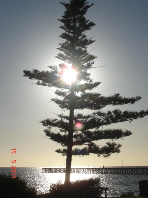 Port Hughes Australia  city photo : Port Hughes South Australia | In my travels | Pinterest