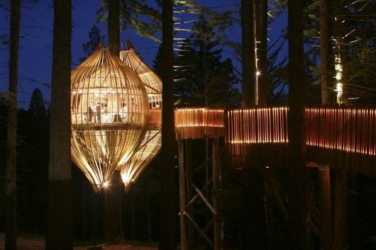 The Yellow Tree House in Auckland, New Zealand. Commissioned by Pacific Environment Architects. Directed by Tracy Collins.