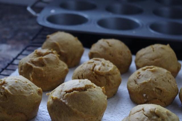 Pin by Lara Klaman on Pumpkin Everything Foodie | Pinterest