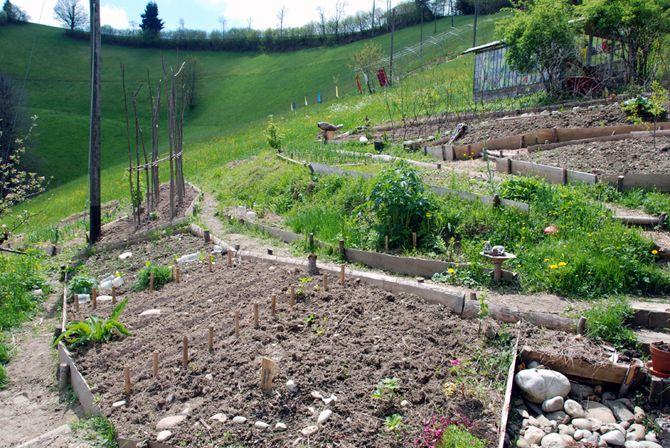 Permaculture garden balmeggberg garden pinterest for Jardin hansen