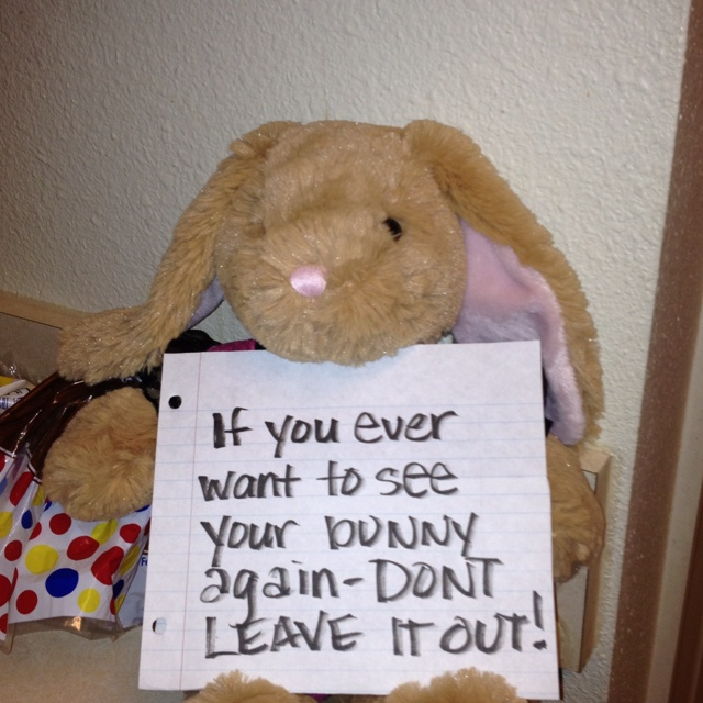 I've been trying to teach my daughter not to leave her things out, I found her bunny on my kitchen counter and she was at a sleepover, so this is the picture I texted her.  Sometimes you have to get clever when teaching kids a lesson :)