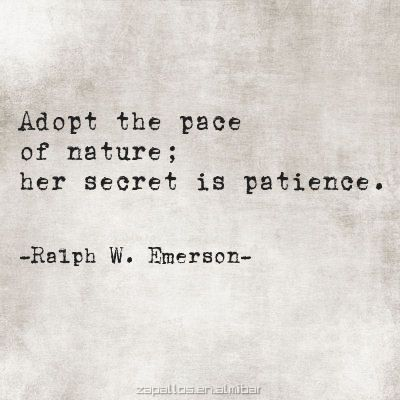 Adopt the pace of nature; her secret is patience. -Ralph Waldo Emerson