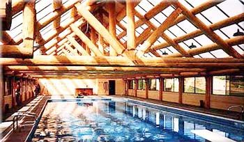 Pin by patricia montgomery on log cabin pinterest - Log cabins with indoor swimming pools ...