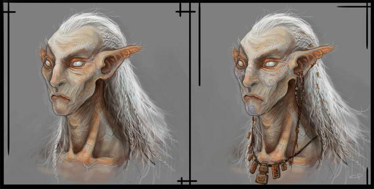 Elves For Elders Pinellas