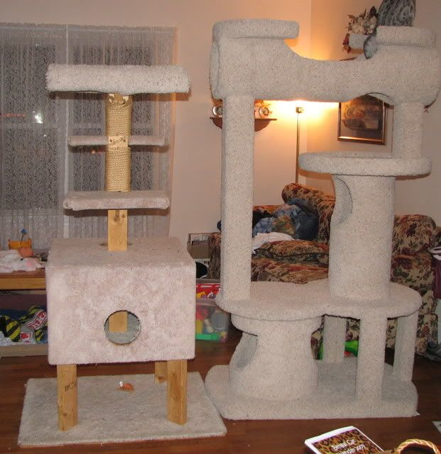 concrete tube cat tree Things for My Wall Pinterest