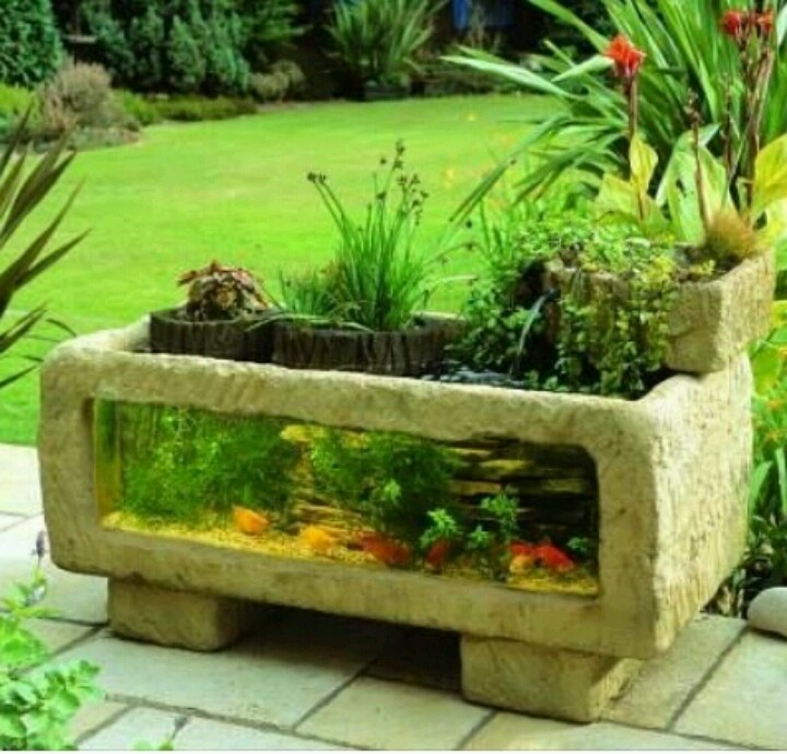 Garden fish tank urban world eclectic pinterest for Water garden fish tank