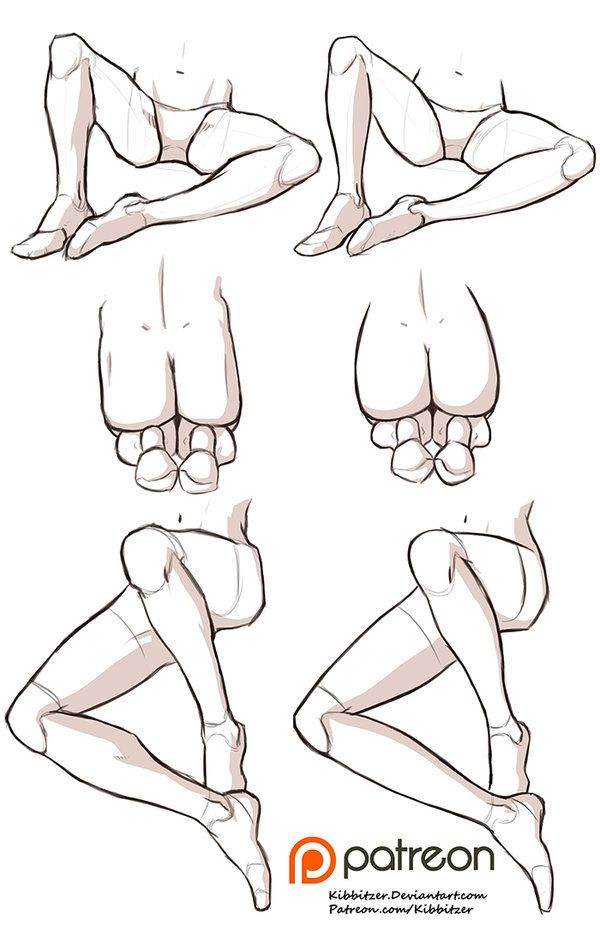 Female anatomy drawing reference