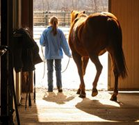 Cure winter boredom with barn aisle exercises  Make good use of the colder months by devoting some time to groundwork.