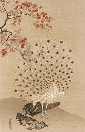 Maruyama Okyo - Peacock