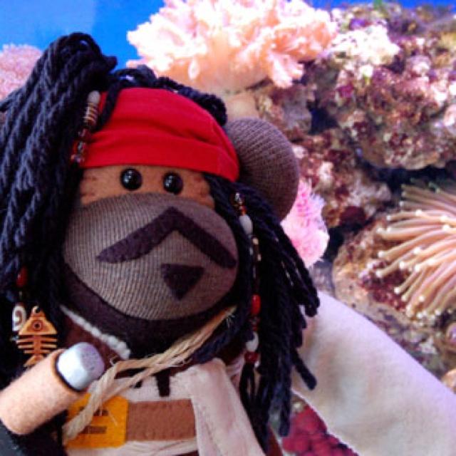 Captain jack sparrow | Sock Monkey Crazy | Pinterest