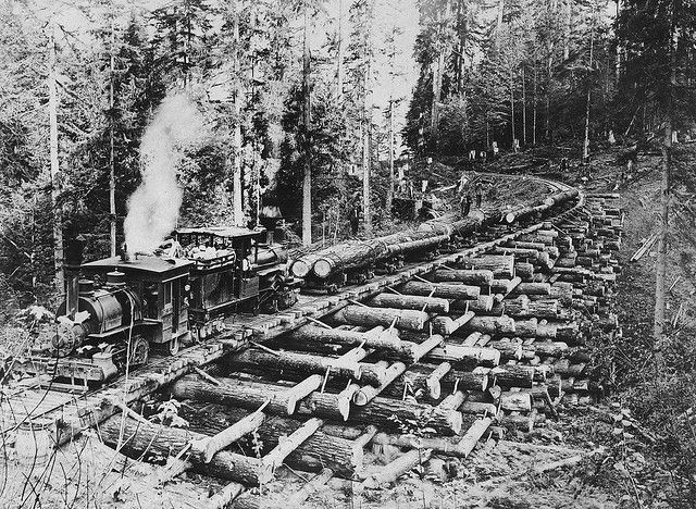 Locomotive pulling railroad cars with logs over a crib trestle - c1900