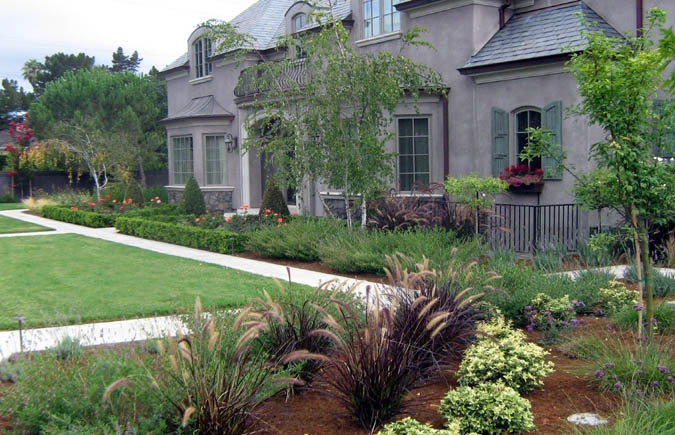 front yard ideas boxwood shrubs gardening pinterest