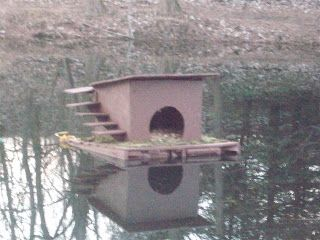 Floating duck house ideas blueprints