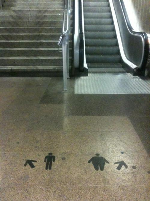 hmmmmm,we fat ones must use the steps too!