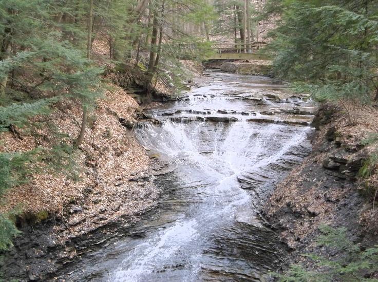 Great Falls [2000]