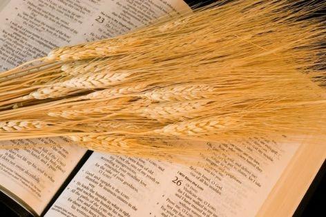 pentecost jewish festival