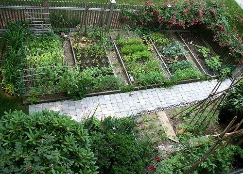 a beautiful vegetable garden gardening pinterest