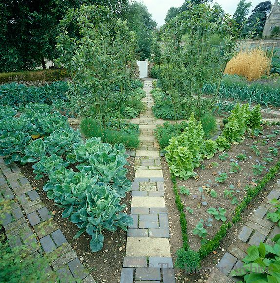 Pin by kirsten anderson on permaculture paradise pinterest for Parterre vegetable garden design