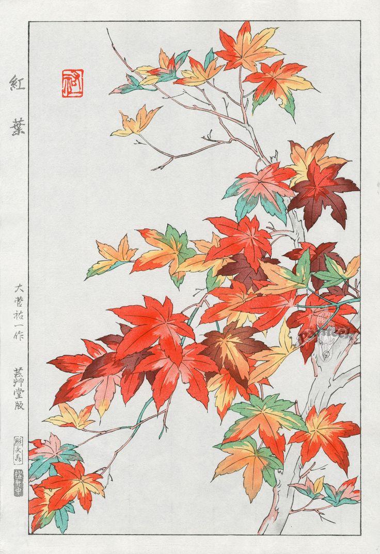 Japanese Maple | Tattoo Ideas & Inspiration - Japanese Art | Osuga Yuichi | #Japanese #Art #Maple