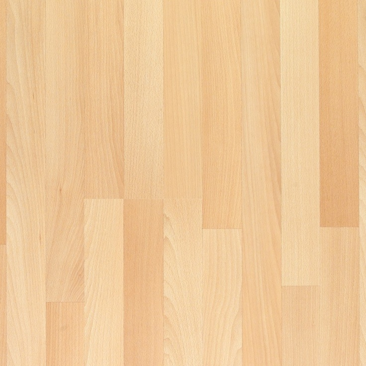 American Beech Wood ~ American beech exotic wood floors pinterest
