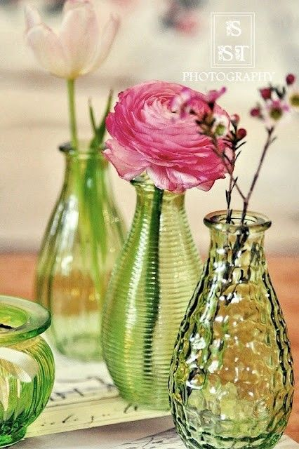 lovely pink flowers in green bottles
