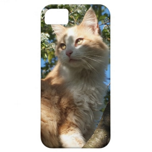 Sahara Cat In A Tree iPhone 5 Case : iPhone 5 cases : Pinterest