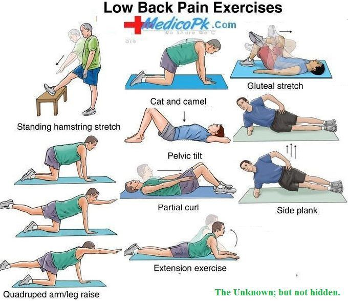 Low Back Pain Exercises !! | exercise | Pinterest Lower Back Stretches For Pain
