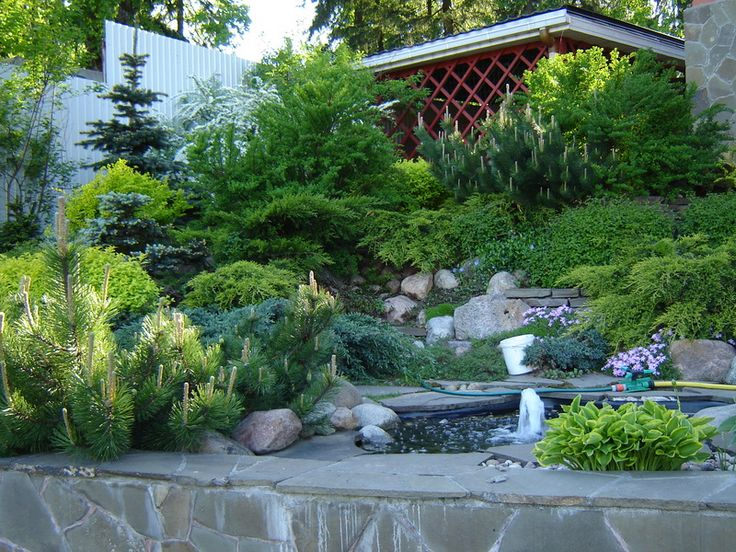 Alpine Garden Design Home Design Ideas Delectable Alpine Garden Design