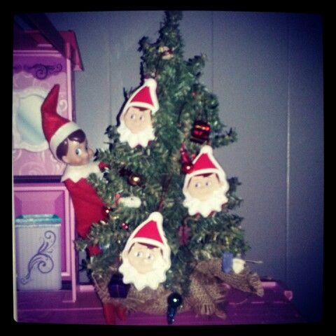 Elf 'selfie' tree! | Our Elf on the Shelf, Buddy! | Pinterest