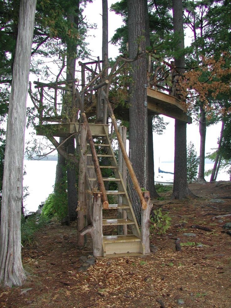 Tree Fort Forts Pinterest