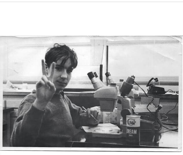 Bill Nye in 9th grade science class Bill Nye The Science Guy Background