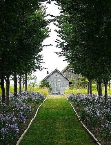 beautiful path to the barns.