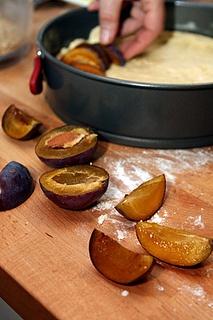 Yeasted plum tart // David Lebovitz